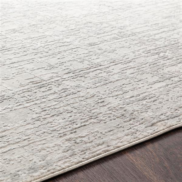 Surya Aisha Modern Area Rug - 9-ft 3-in x 12-ft 3-in- Rectangular - Grey