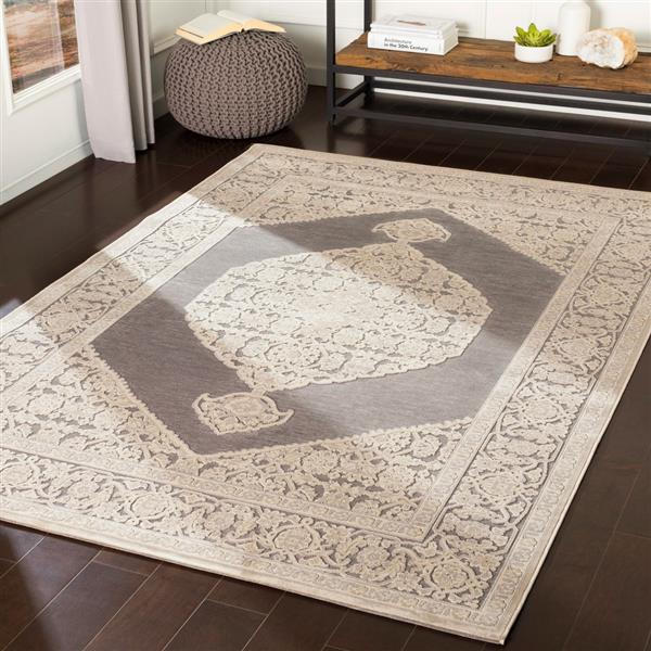 Surya Aesop updated traditional area rug - 9-ft x 12-ft - Rectangular - Beige