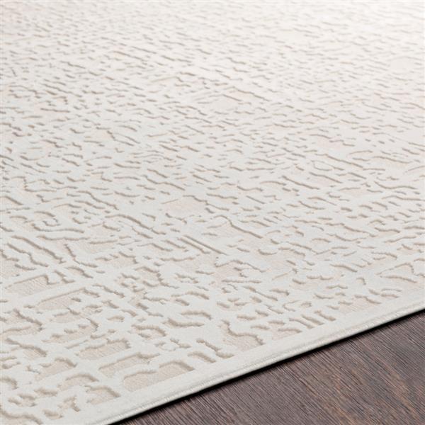 Surya Aesop transitional area rug - 9-ft x 12-ft - Rectangular - Beige