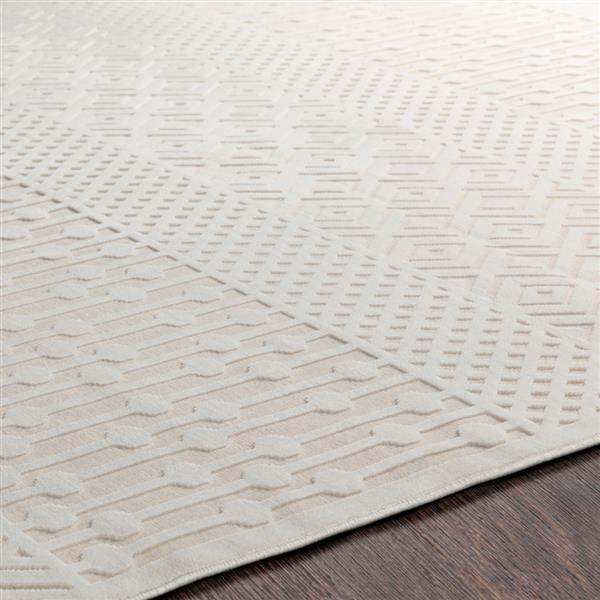 Surya Aesop bohemian area rug - 5-ft 2-in x 7-ft 3-in - Rectangular - Beige