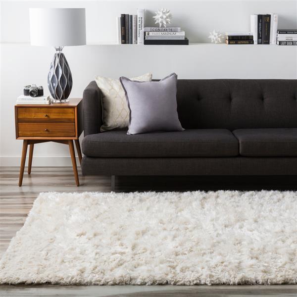 Surya Ashton shag area rug - 3-ft 6-in x 5-ft 6-in - Rectangular - Cream