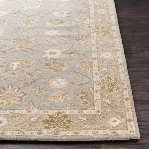 Surya Caesar Traditional Area Rug - 10-ft x 14-ft - Rectangular - Olive