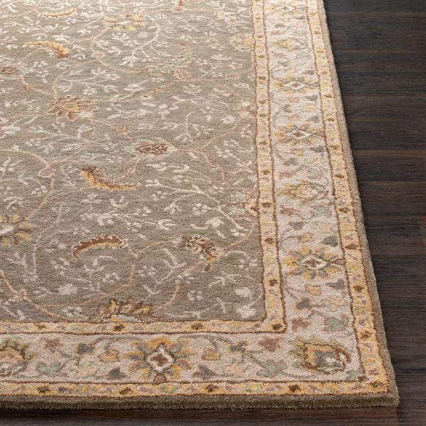 Surya Caesar Traditional Area Rug - 10-ft x 14-ft - Rectangular - Brown