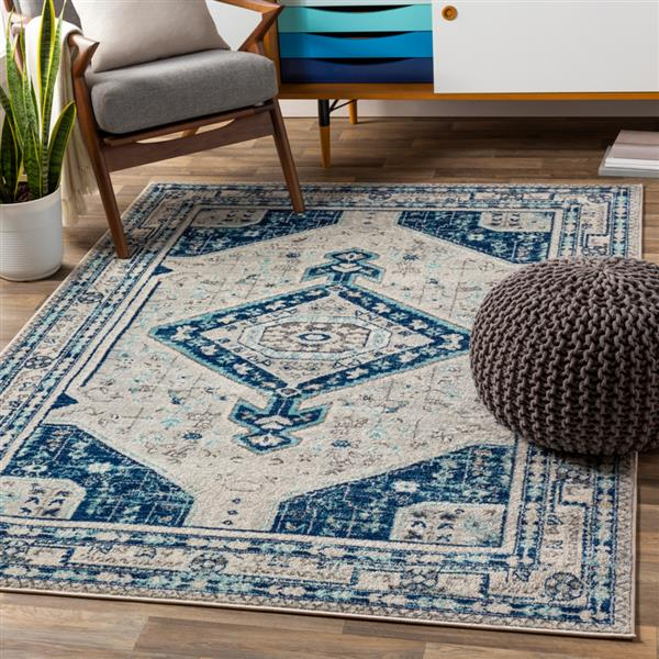 Surya Chester Bohemian Area Rug - 7-ft 10-in x 10-ft 3-in - Rectangular - Navy