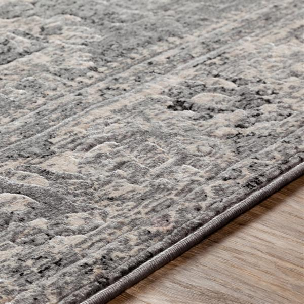 Surya City Updated Traditional Area Rug - 5-ft 3-in x 7-ft 3-in - Rectangular - Black