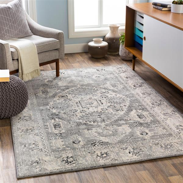 Surya City Updated Traditional Area Rug - 7-ft 10-in x 10-ft 3-in - Rectangular - Black