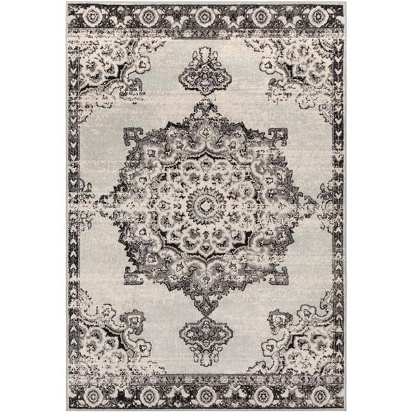 Surya Chester Bohemian Area Rug - 6-ft 7-in x 9-ft - Rectangular - Grey
