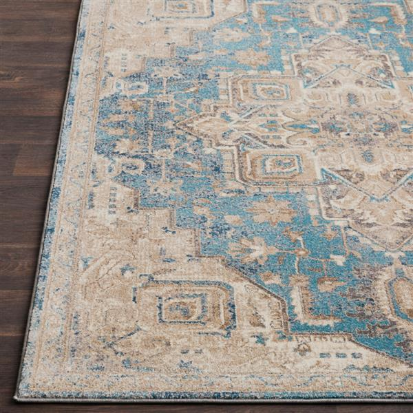 Surya Ayasofya Updated Traditional Area Rug - 7-ft 6-in x 9-ft 6-in - Rectangular - Blue