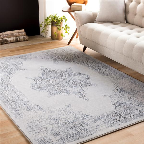 Surya Contempo Updated Traditional Area Rug - 3-ft 11-in x 5-ft 7-in - Rectangular - White/Gray