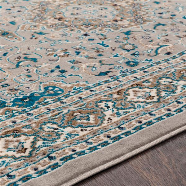 Surya Clairmont Updated Traditional Area Rug - 9-ft 3-in x 12-ft 3-in - Rectangular - Sky Blue