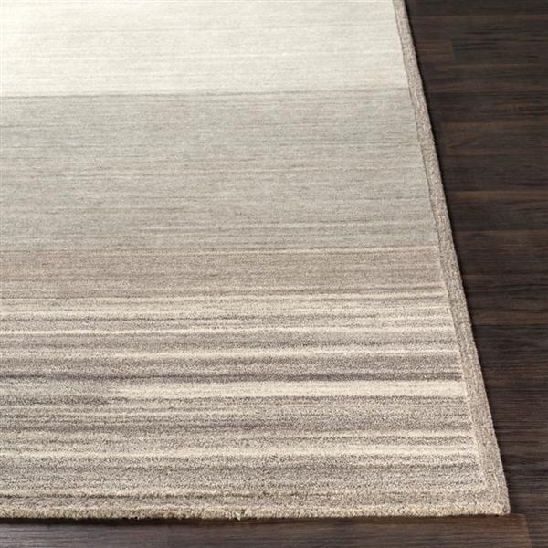 Surya Equilibrium Modern Area Rug - 5-ft x 7-ft 6-in - Rectangular - Cream/Beige