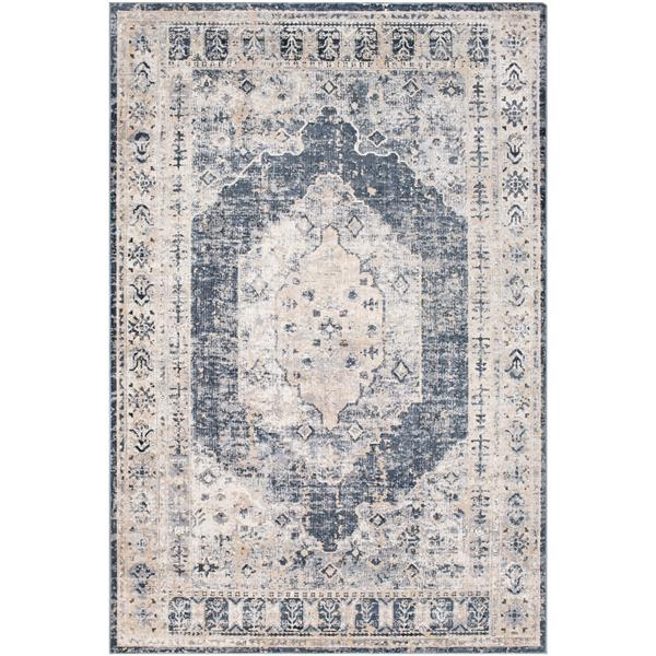Surya Durham Updated Traditional Area Rug - 6-ft 7-in x 9-ft 6-in - Rectangular - Taupe