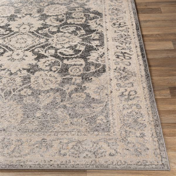 Surya City light Updated Traditional Area Rug - 7-ft 10-in x 10-ft - Rectangular - Charcoal