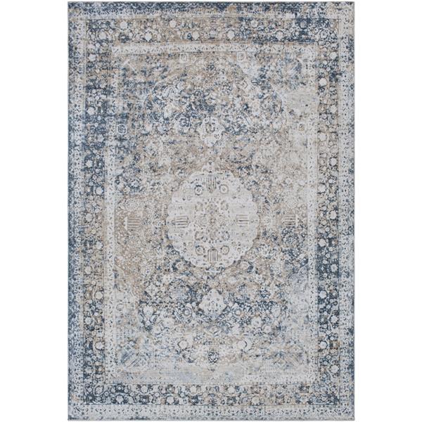 Surya Durham Updated Traditional Area Rug - 7-ft 10-in x 10-ft 3-in - Rectangular - Dark Blue