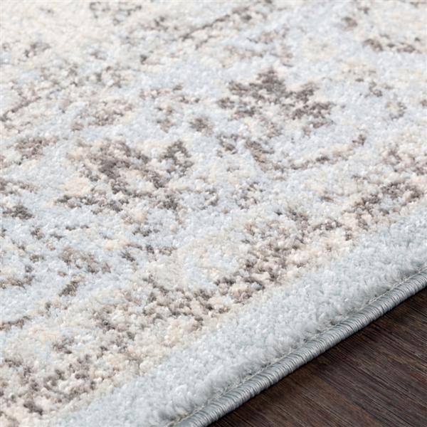 Surya Chelsea Updated Traditional Area Rug - 5-ft 3-in x 7-ft 3-in - Rectangular - Pale Blue