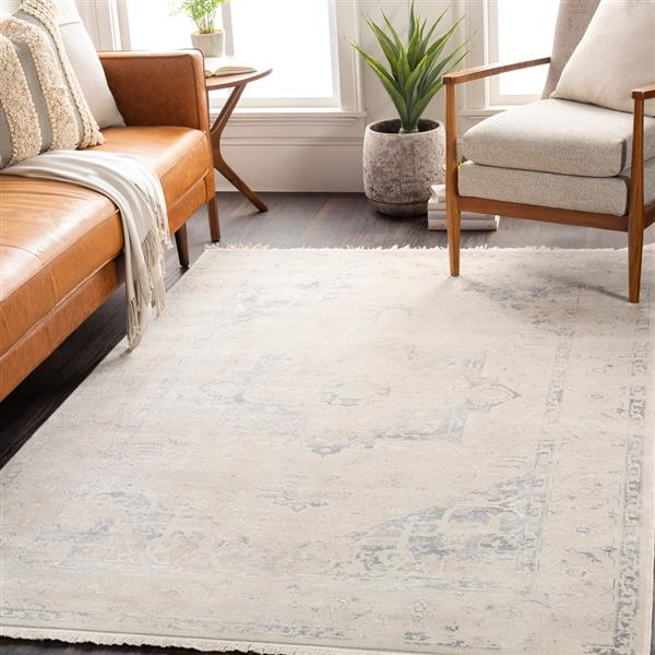 Surya Ephesians Updated Traditional Area Rug - 5-ft x 7-ft 9-in - Rectangular - Charcoal