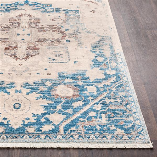 Surya Ephesians Updated Traditional Area Rug - 5-ft x 7-ft 9-in - Rectangular - Sky Blue/Beige