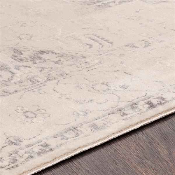 Surya Ephesians Updated Traditional Area Rug - 3-ft 11-in x 5-ft 3-in - Rectangular - Charcoal