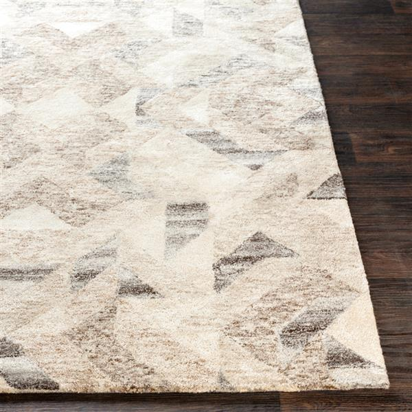 Surya Falcon Modern Area Rug - 5-ft x 7-ft 6-in - Rectangular - Brown