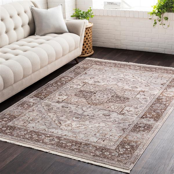 Surya Ephesians Updated Traditional Area Rug - 5-ft x 7-ft 9-in - Rectangular - Brown