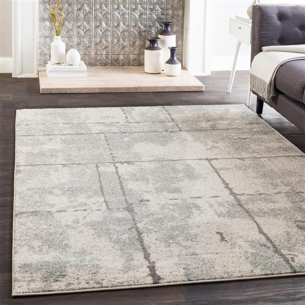 Surya Elaziz Modern Area Rug - 5-ft 3-in x 7-ft 6-in - Rectangular - Gray