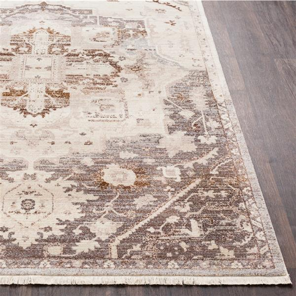 Surya Ephesians Updated Traditional Area Rug - 9-ft x 12-ft 10-in - Rectangular - Brown