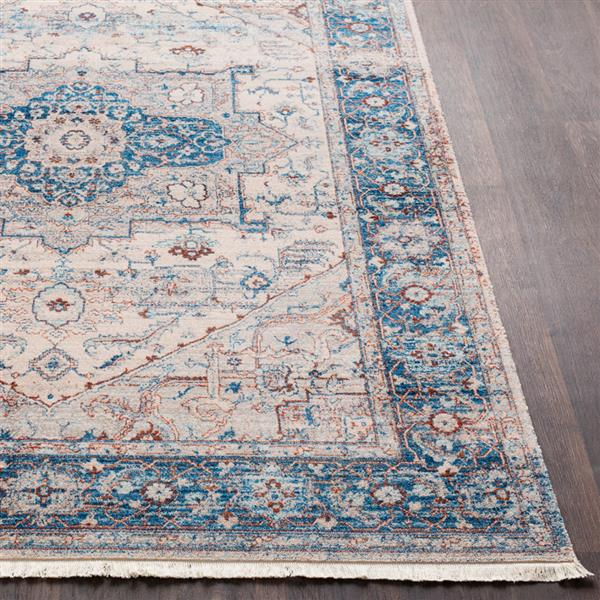 Surya Ephesians Updated Traditional Area Rug - 3-ft 11-in x 5-ft 7-in - Rectangular - Blue