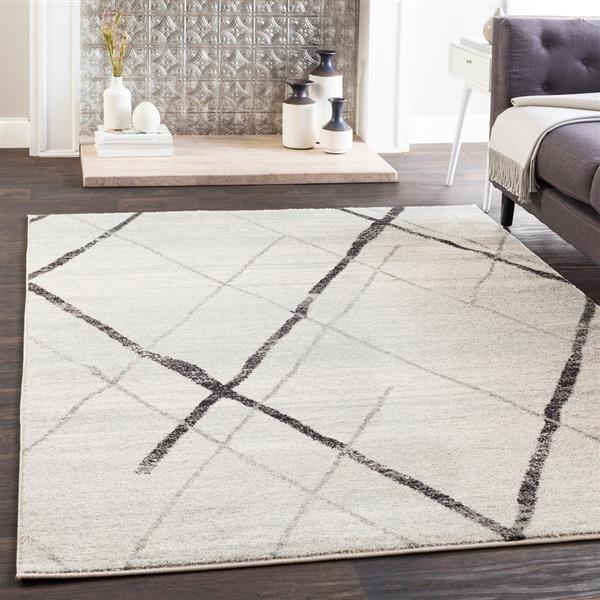 Surya Elaziz Modern Area Rug - 5-ft 3-in x 7-ft 6-in - Rectangular - Black/Gray