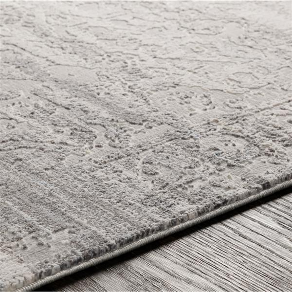 Surya Genesis Updated Traditional Area Rug - 7-ft 10-in x 10-ft 3-in - Rectangular - Silver
