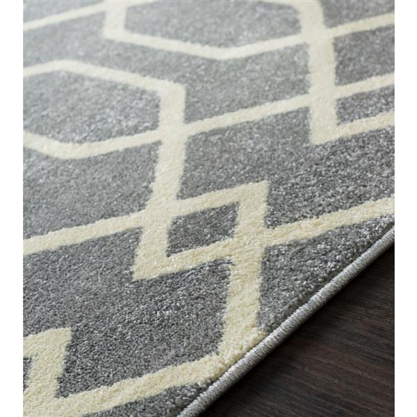 Surya Horizon Transitional Area Rug - 9-ft 3-in x 12-ft 6-in - Rectangular - Gray