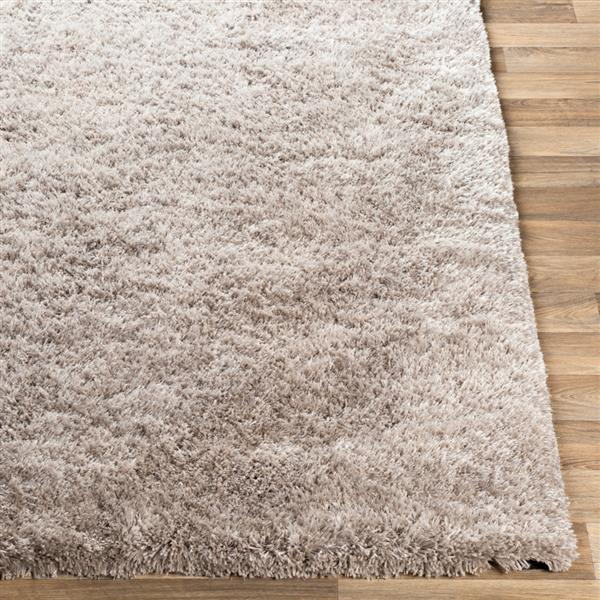 Surya Grizzly Shag Area Rug - 5-ft x 8-ft - Rectangular - Taupe