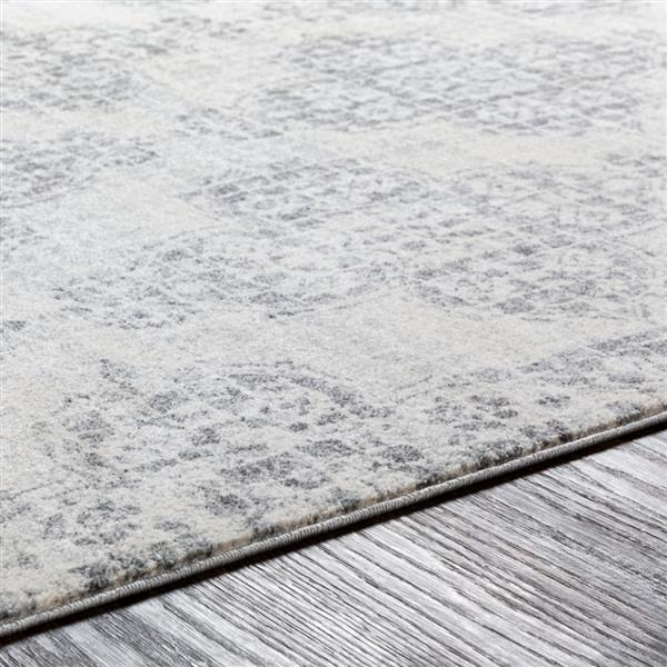 Surya Harput Transitional Area Rug - 9-ft 3-in x 12-ft 6-in - Rectangular - Gray