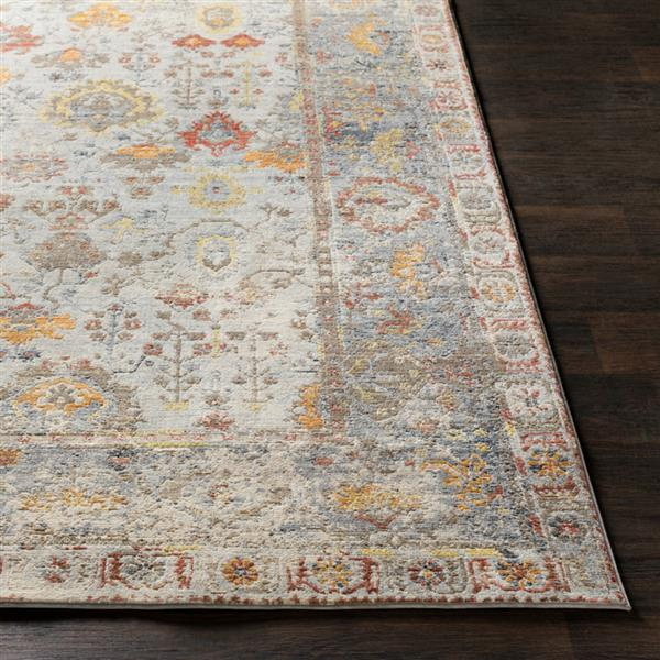 Surya Liverpool Updated Traditional Area Rug - 3-ft 11-in x 5-ft 7-in - Rectangular - Gray