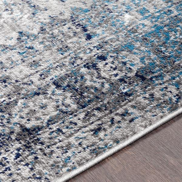 Surya Monte Carlo Updated Traditional Area Rug - 6-ft 7-in x 9-ft - Rectangular - Blue/Gray