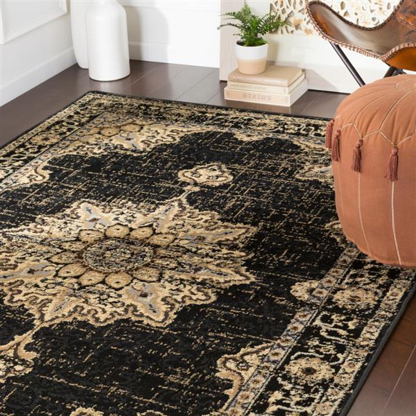 Surya Paramount Updated Traditional Area Rug - 6-ft 7-in x 9-ft 6-in - Rectangular - Black