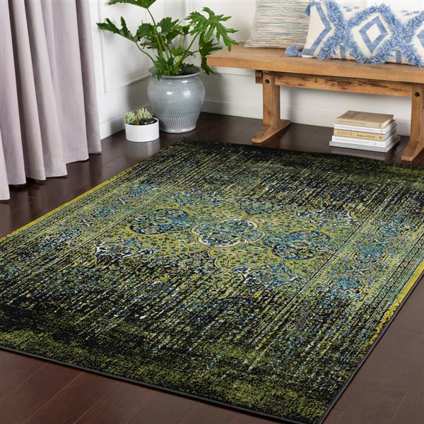Surya Mumbai Updated Traditional Area Rug - 7-ft 10-in x 10-ft 3-in - Rectangular - Aqua/Green