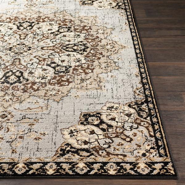 Surya Paramount Updated Traditional Area Rug - 8-ft 10-in x 12-ft 9-in - Rectangular - Gray