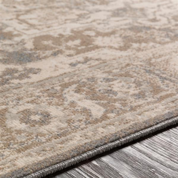 Surya Oslo Updated Traditional Area Rug - 7-ft 10-in x 10-ft 3-in - Rectangular - Camel