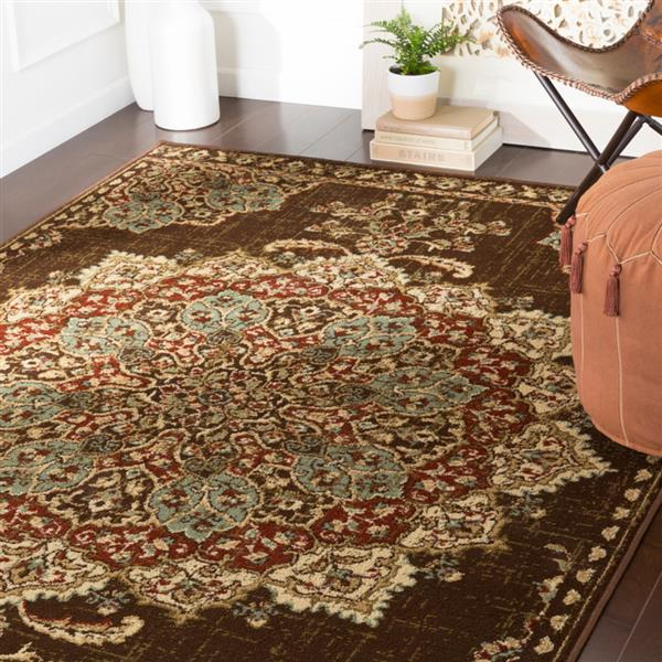 Surya Paramount Updated Traditional Area Rug - 7-ft 9-in x 11-ft 2-in - Rectangular - Brown