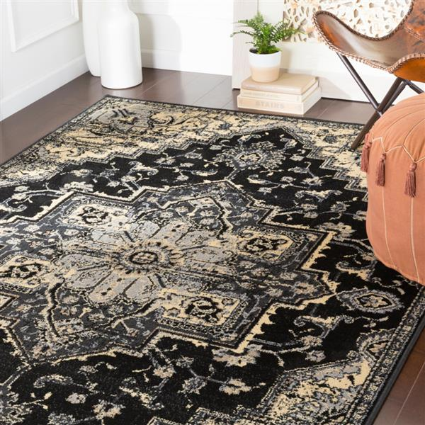 Surya Paramount Updated Traditional Area Rug - 7-ft 9-in x 11-ft 2-in - Rectangular - Black