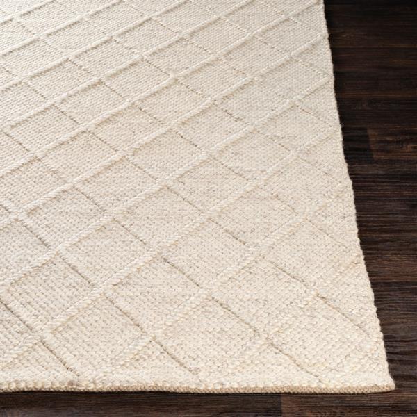 Surya Napels Texture Area Rug - 3-ft x 5-ft - Rectangular - Medium Gray