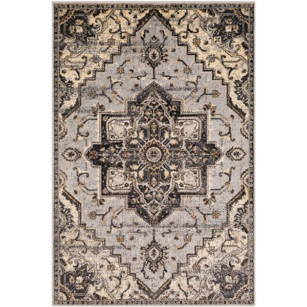 Surya Paramount Updated Traditional Area Rug - 6-ft 7-in x 9-ft 6-in - Rectangular - Gray