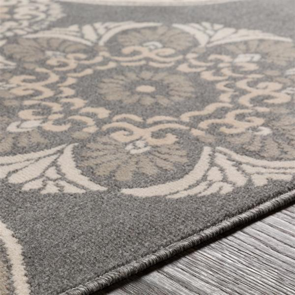 Surya Oslo Transitional Area Rug - 7-ft 10-in x 10-ft 3-in - Rectangular - Charcoal