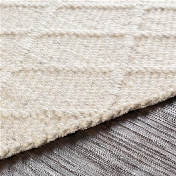 Surya Napels Texture Area Rug - 6-ft x 9-ft - Rectangular - Medium Gray