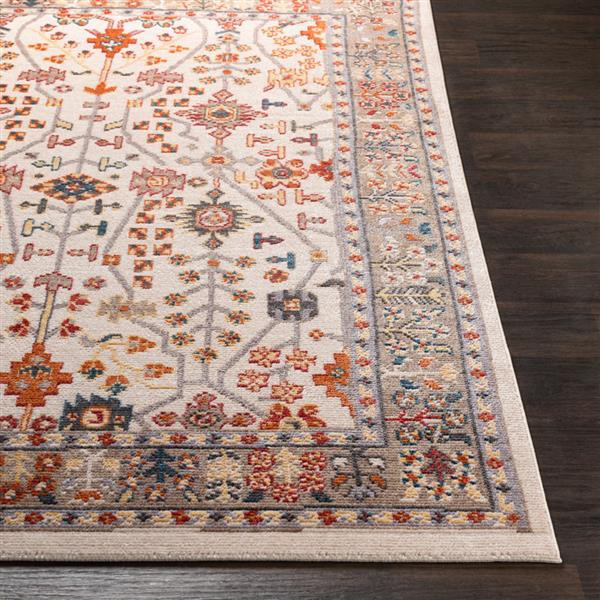 Surya Patina Updated Traditional Area Rug - 7-ft 10-in x 10-ft 3-in - Rectangular - Blush/White