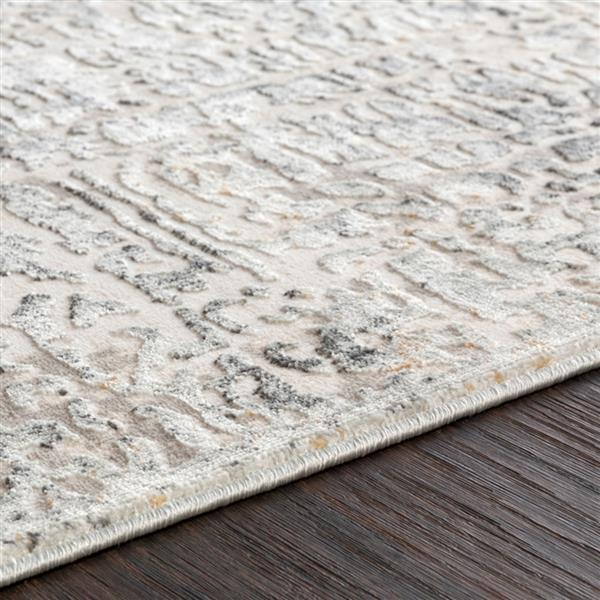 Surya Quatro Updated Traditional Area Rug - 6-ft 7-in x 9-ft 6-in - Rectangular - Silver Gray