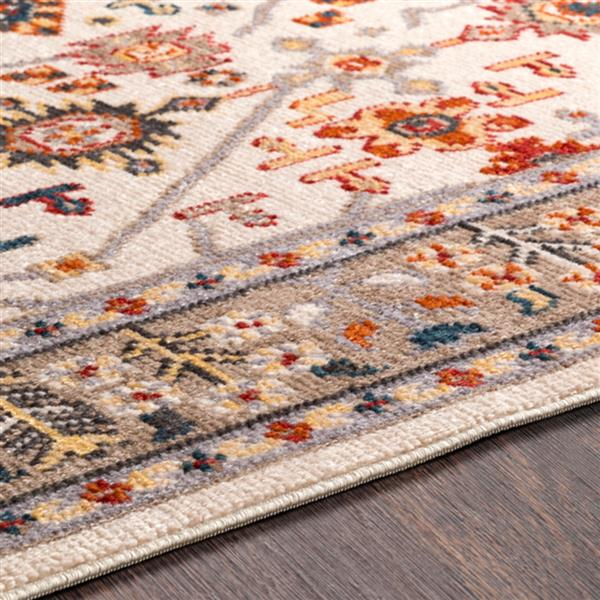 Surya Patina Updated Traditional Area Rug - 3-ft 11-in x 5-ft 7-in - Rectangular - Blush/White