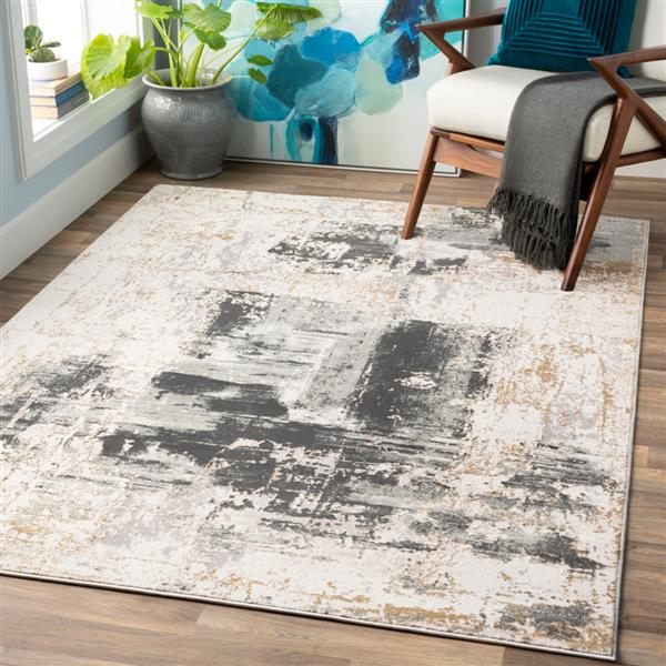 Surya Quatro Updated Traditional Area Rug - 9-ft 3-in x 12-ft 3-in - Rectangular - Charcoal