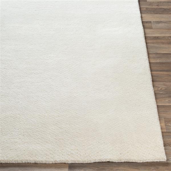 Surya Parma Solid Area Rug - 4-ft x 6-ft - Rectangular - Cream