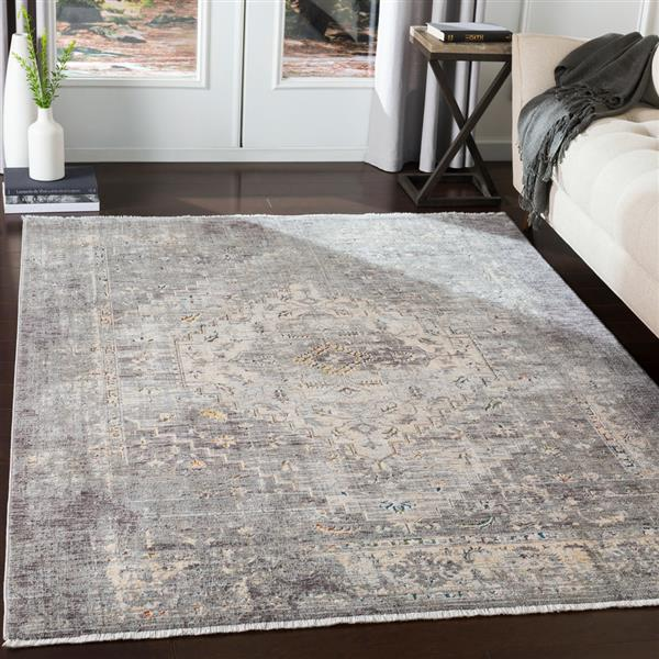 Surya Presidential Updated Traditional Area Rug - 3-ft 3-in x 5-ft - Rectangular - Gray